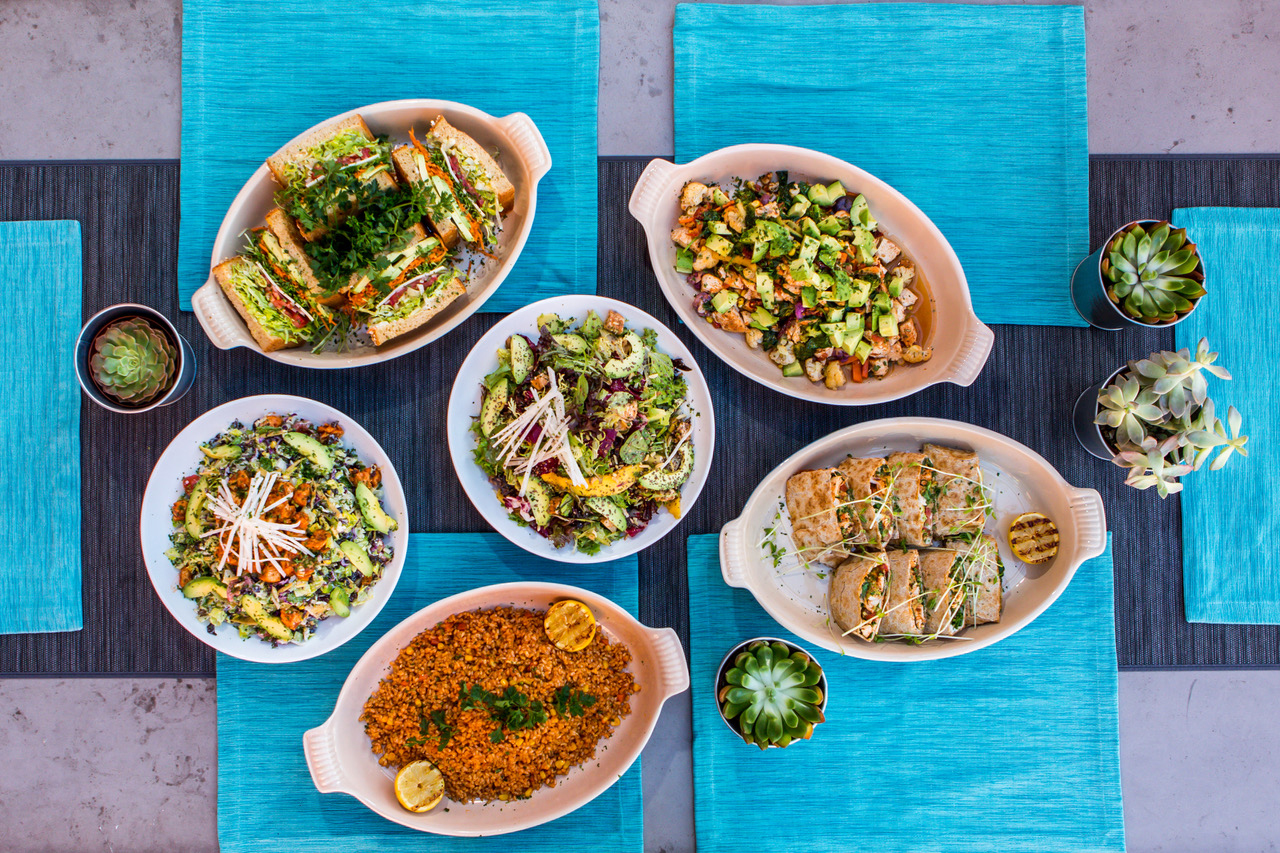 Birds eye view of six Cafe Vida dishes, including three salads, a quesadilla wrap, a burger, and a warm grain bowl. Dishes are all in white dishes against blue placemats, surrounded by four small succulents